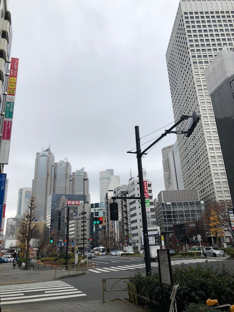 Calles de Japón, edificios